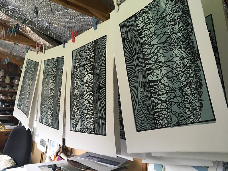 New trees hanging.jpg