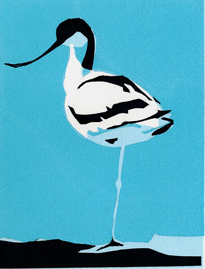 Avocet One
