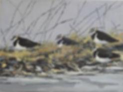 Lapwings - oil painting.jpg