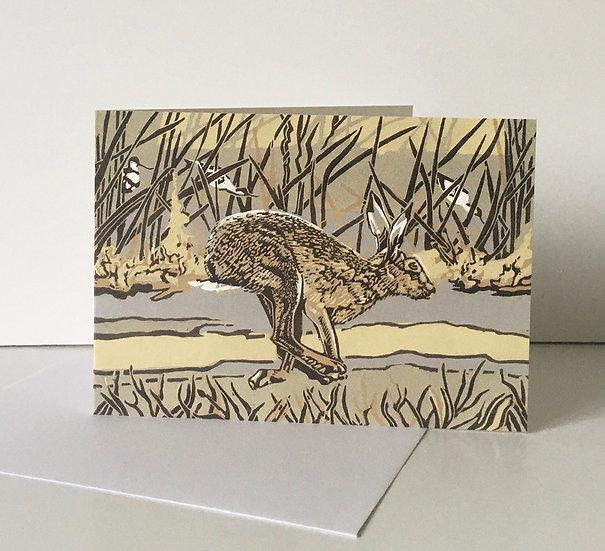 Saltmarsh Hare - Orwell Press Art Publishing