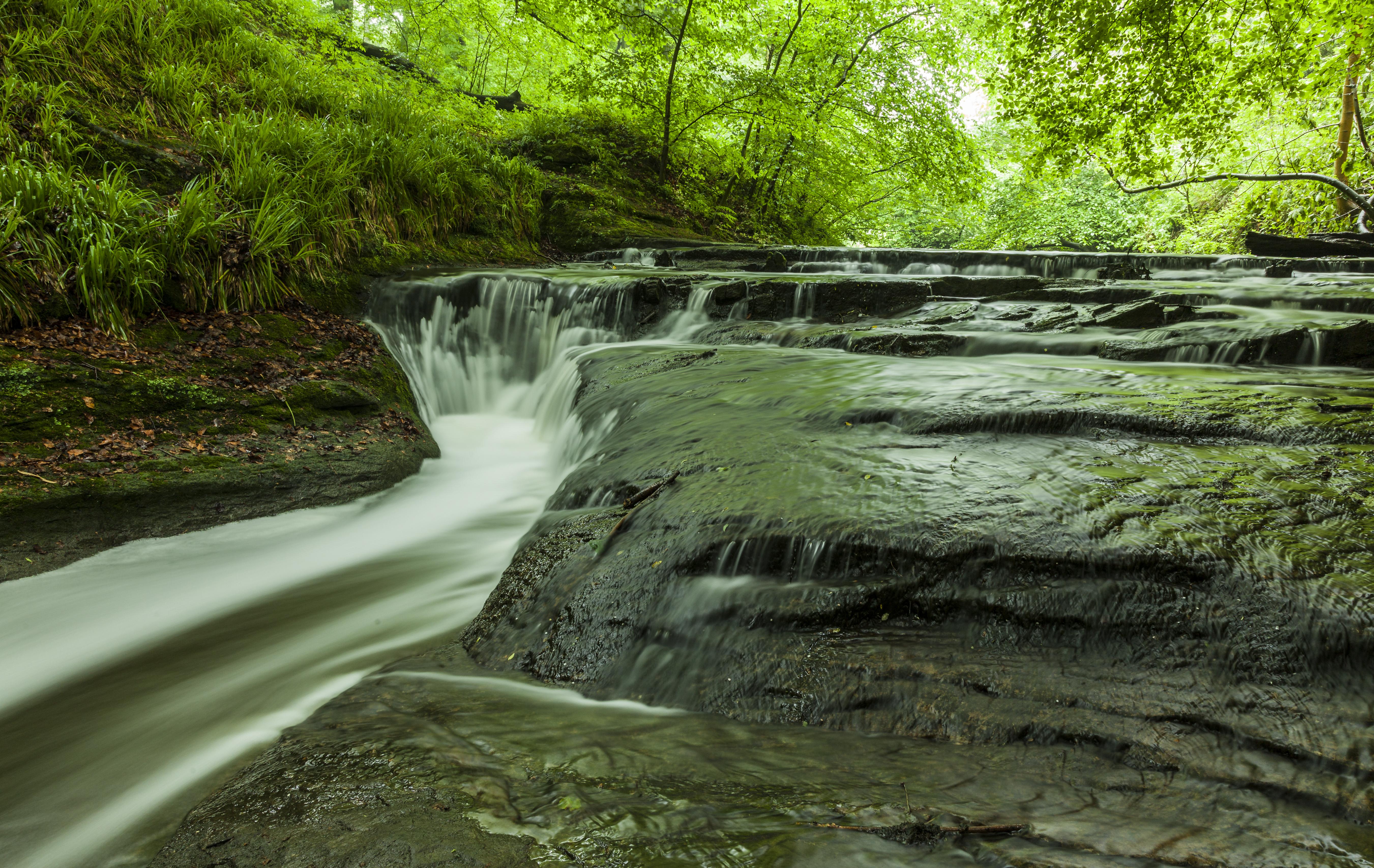 Holywell Waterfall