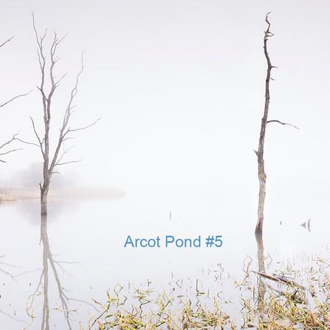 Arcot Pond #5.jpg