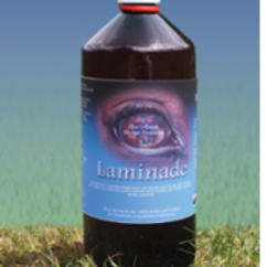 Circulation / Laminade