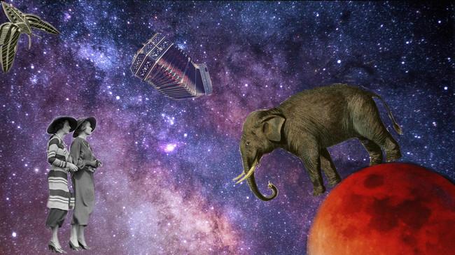 Elefante en espacio