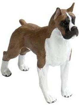 Cane Boxer