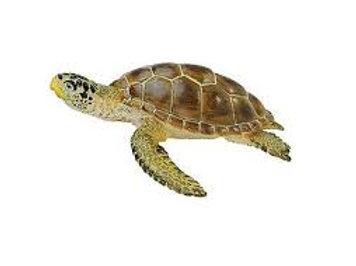 Tartaruga marina cm. 9.5