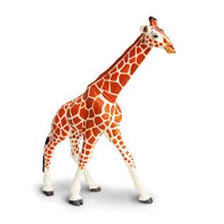 giraffa cm. 24