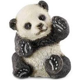 Panda cucciolo che gioca