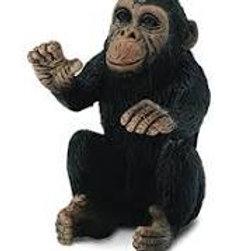 Scimpanzé cucciolo che abbraccia