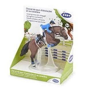 Cavallo per salto ad ostacoli e cavaliere