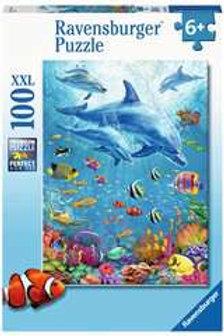 100 XXL Raven Incontro di delfini
