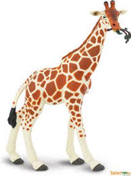 Giraffa cm. 20