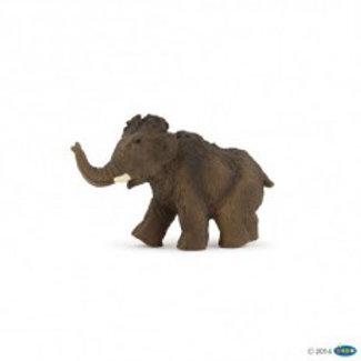 Mammut giovane