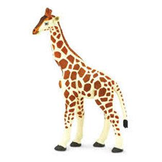 Giraffa cm. 18