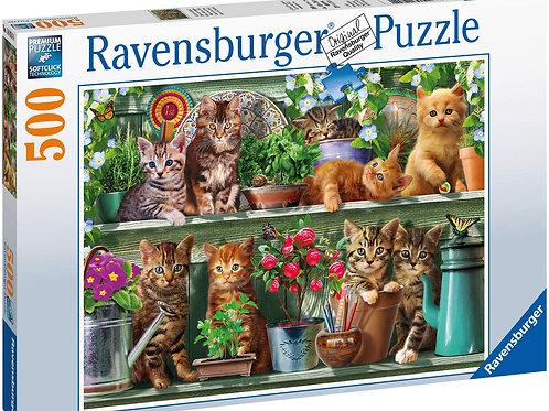Puzzle 500 pz. - Gatti sugli scaffali