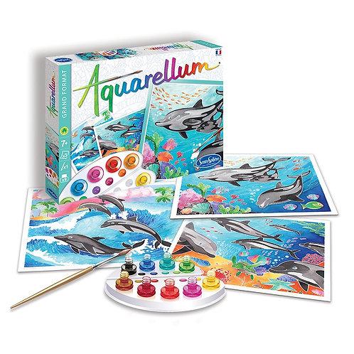 Aquarellum grande - Delfini