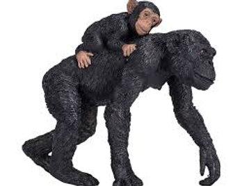 Scimpanzé con cucciolo