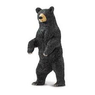 Orso nero in piedi
