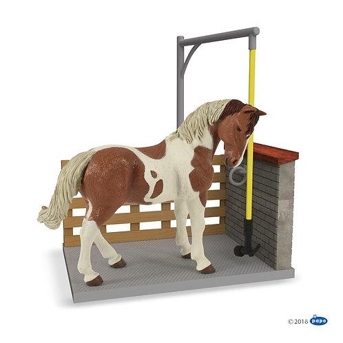 Box lavaggio per i cavalli