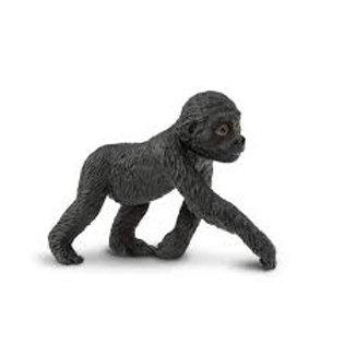 Gorilla cucciolo