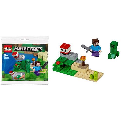 Lego Minecraft - Steve and Creeper