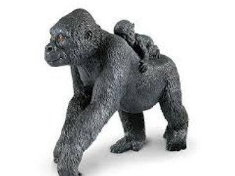 Gorilla con cucciolo