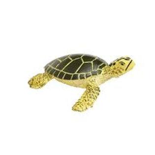 Tartaruga marina cucciolo