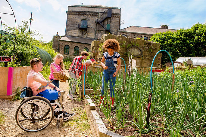 Mix of older and younger people including a wheelchair user in a Community garden