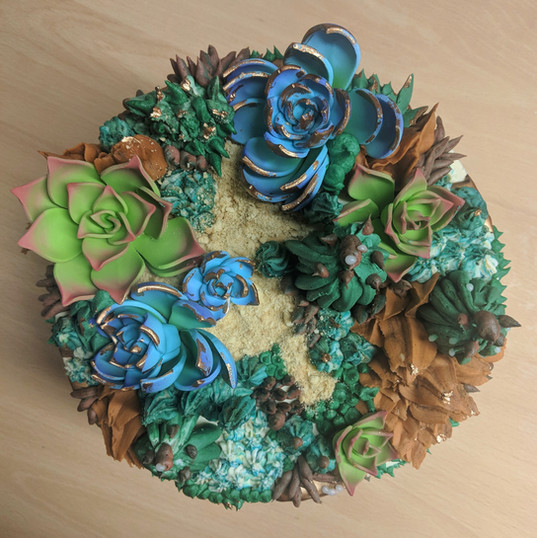 Succulent cake (coming soon)