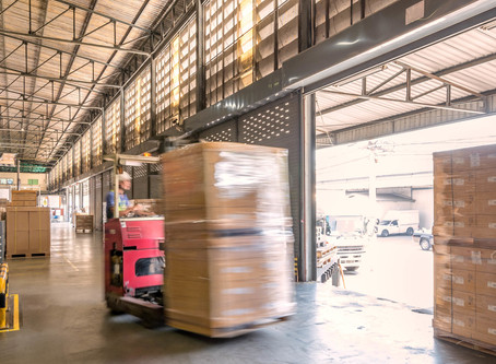 Risks and diseases from birds in warehouse, factories & logistics