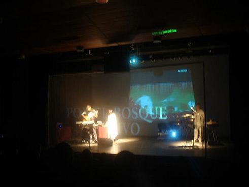 concierto 3d.jpg