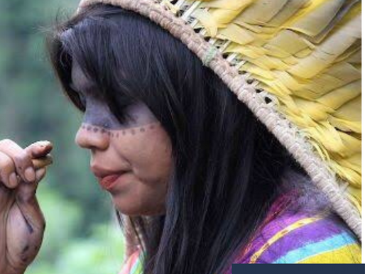 TRF3 CONCEDE BENEFÍCIO ASSISTENCIAL A ÍNDIGENA PORTADORA DE HIV