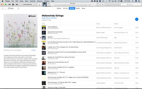 Ceren Turkmenoglu Apple Classical Playlist Melancholy Strings.png