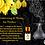 Thumbnail: YLANG YLANG ESSENTIAL OIL