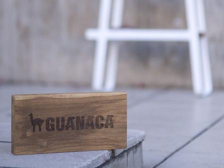 Guanaca