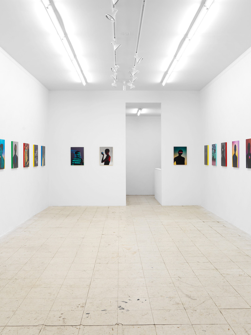 Installation view Lifelike Marinaro, New York