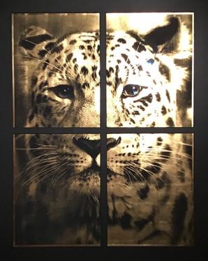Amur panther