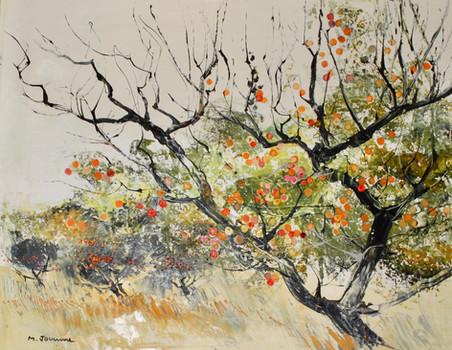 Branche d'Abricot