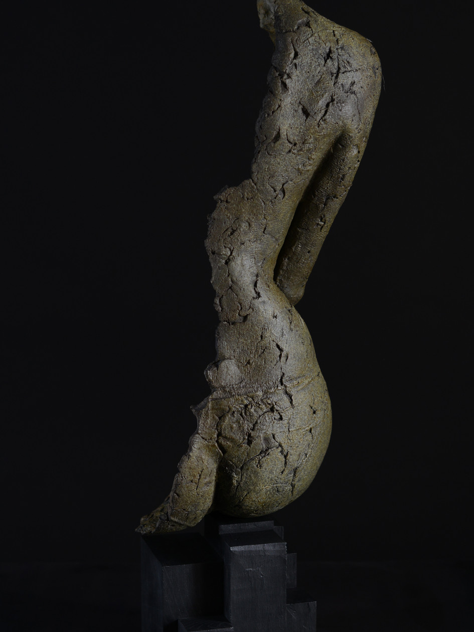 C Bronze