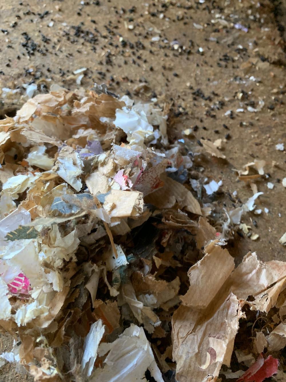 le papier le tissu utile pour le nid