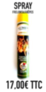 Traitement grande efficacité contre les frelons guêpes nids vendus chez oust nuisibles basé à saint quentin de baron en gironde