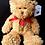 Thumbnail: Little Warrior Bear