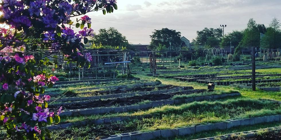 Growing Communities Workshop - GA Food Oasis