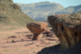 פארק תמנע - שאנטי טיולים במדבר