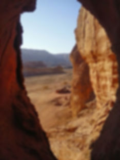 טיול של יום שלם באילת  והסביבה- שאנטי טיולים במדבר