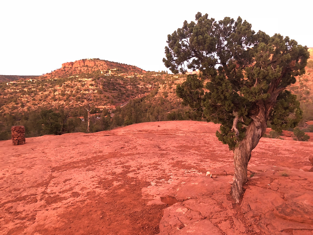 bello rock vortex view from plateau in sedona arizona