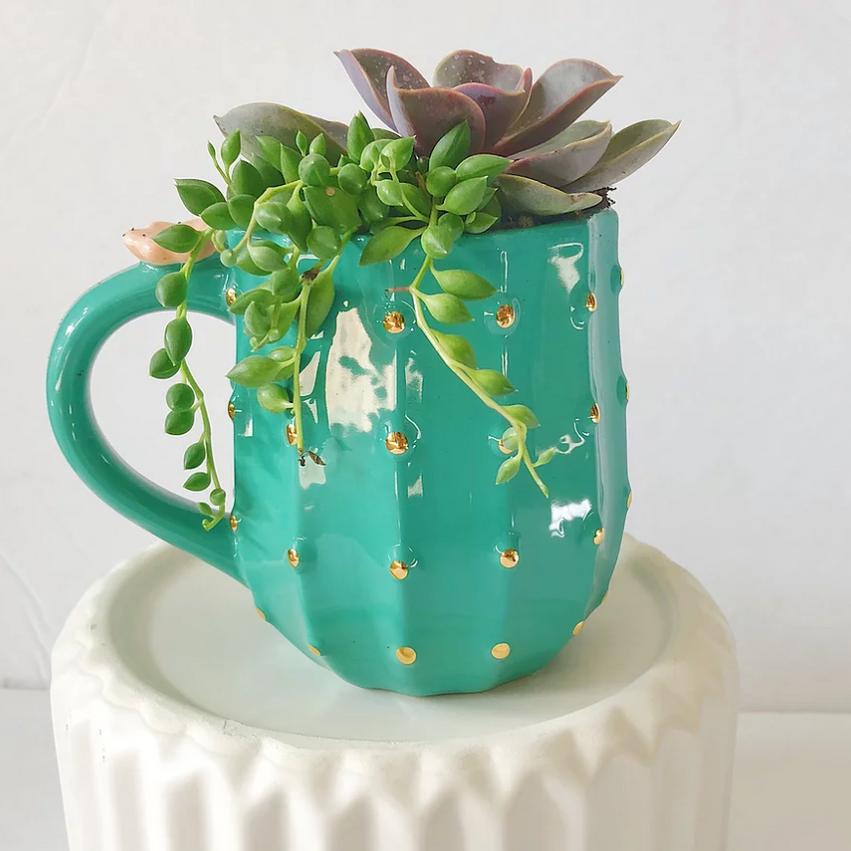 Cactus Mug Arrangement