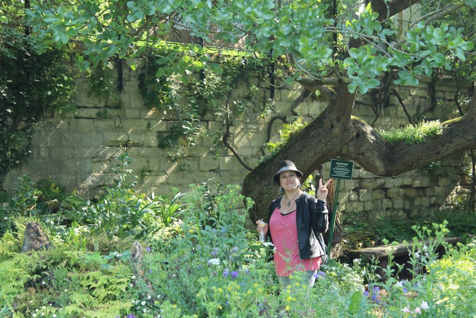 La guide trouve les arbres