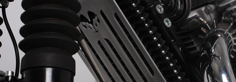 Grille radiateur interceptor 650