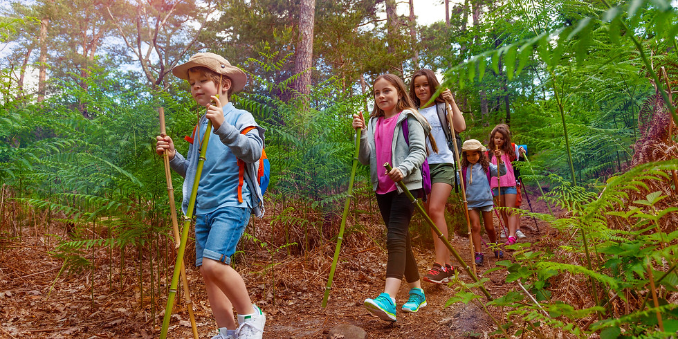 Children's Trail- Theme to be confirmed